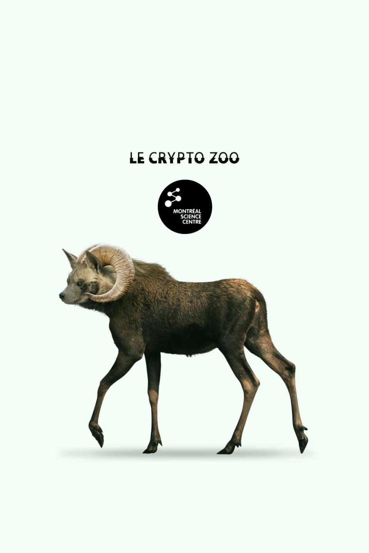 Le Crypto Zoo
